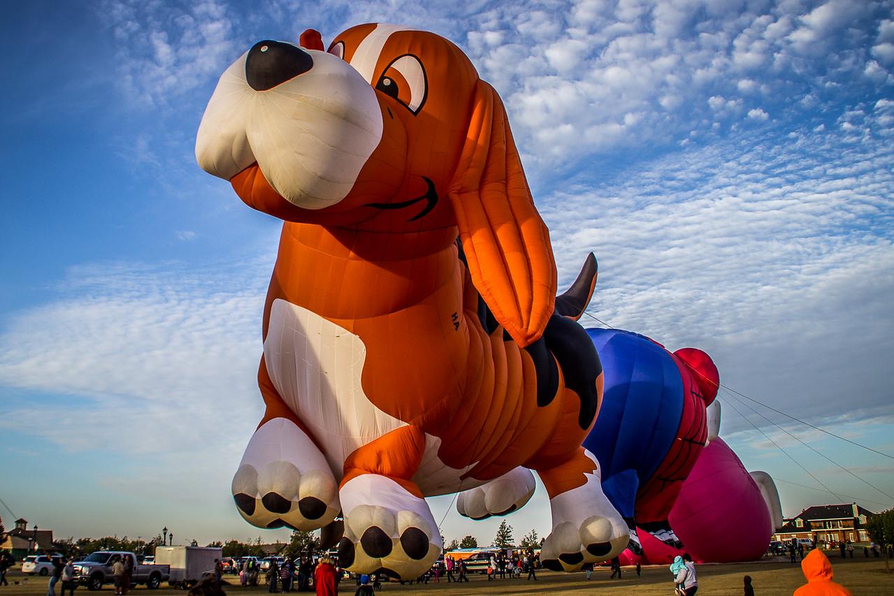 Beagle Balloon