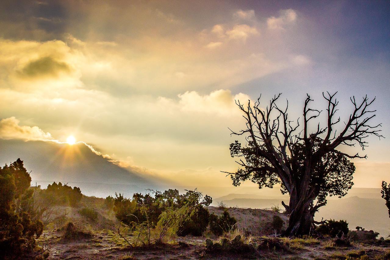Sun lifting over the fog, Palo Duro Canyon