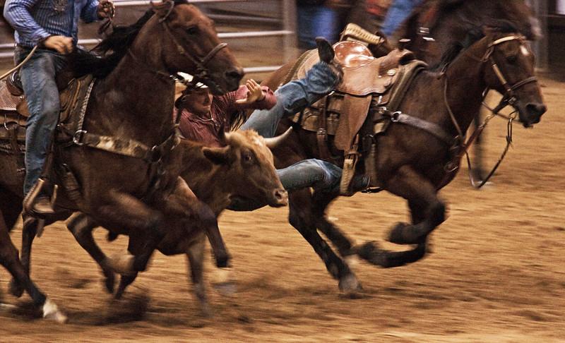 Calf Wranglin' -Pasadena Rodeo 2012