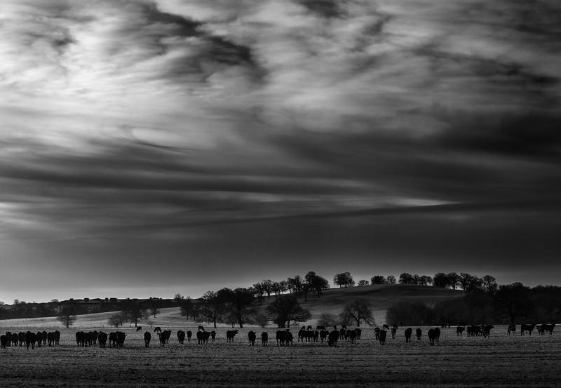 Westlake, Texas (December 2012)