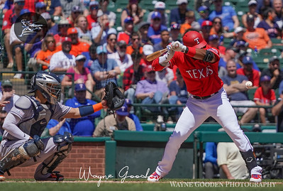 Elvis Andrus photo by Wayne Gooden