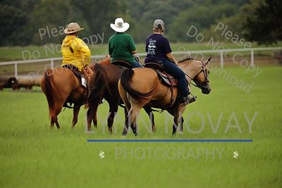 Equine Trail Sports Challenge