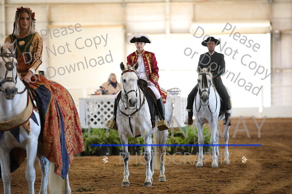 Andalusian ~ Texas Breed Show ~ 11/19/2016
