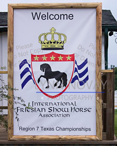 Friesian  ~ Texas Breed Horse Show ~  8-27-2016