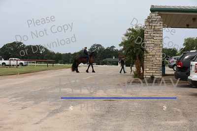 Texas Open Breed Show ~ TRHP