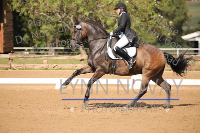 Texas Rose Horse Park ~ Dressage Classic