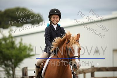 WPCSA ~ Welsh Pony & Cob Society