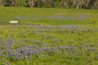 Chapel Hill Boat and Bluebonnets