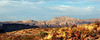 Chisos Mountains panoramic #2