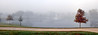Kimzey Fog #4 panoramic