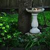 Private Garden Bird Bath<br /> Schertz, TX