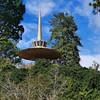 The Spiral Needle<br /> Hodges Garden State Park, LA