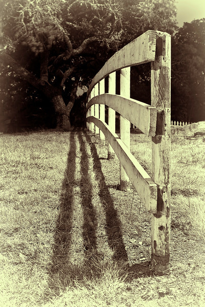 'If Fences could Talk'