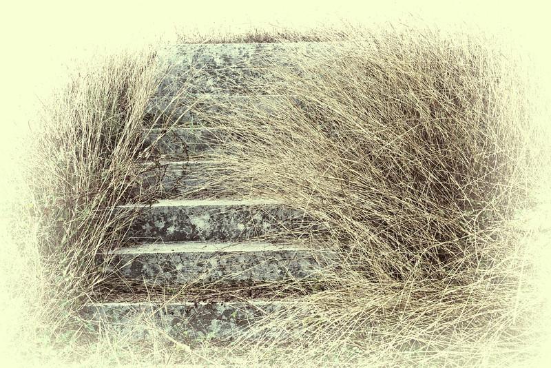 The Steps - Springhouse, Sam Houston Homesite, Independence, TX
