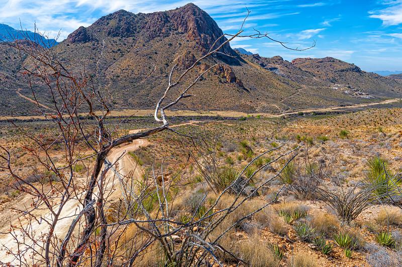 'Desert Descent'