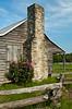 A restored log cabin and wild roses near Brenham, Texas, USA.