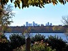 Downtown Dallas from the Arboretum
