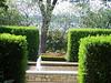 Arboretum trees - 2