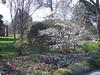 Arboretum trees and flowers
