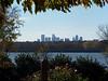 Dallas Skyline from the Arboretum
