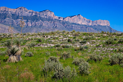 Guadalupe Mountain front viewed east. from the gypsum dunes. Cliffs display a cross section of the Permian, Capitan Reef complex.