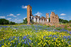 Abandoned building ruins of a former school with a variety of wildflowers in the hill country at Pontotoc, Texas, USA.
