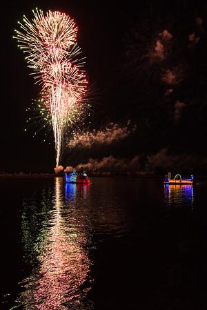 Houston Zoo Lights and Kemah Boat Parade