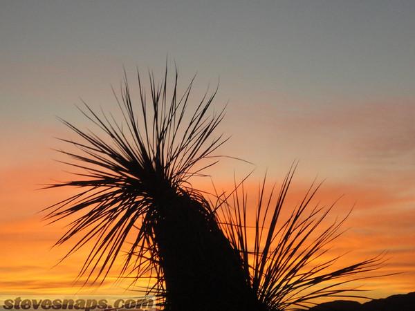 Terlingua, Texas