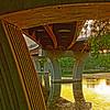 Under Lamar St. Bridge on Town Lake in Austin Texas