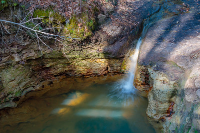 Boykin Springs in Angelina National Forest