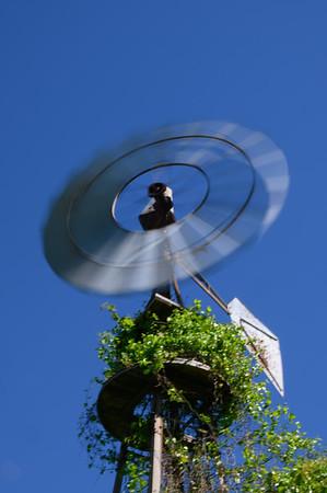 Windmill at Penn Farm