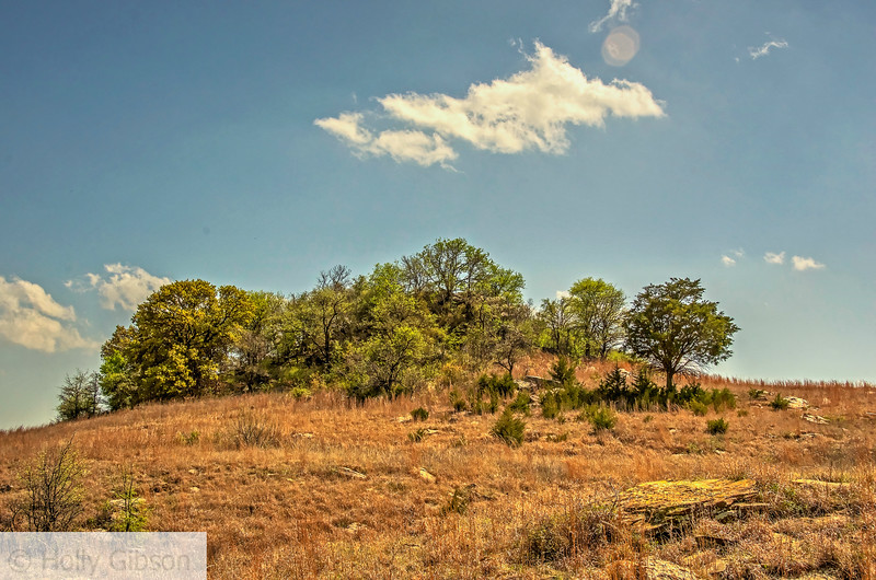 Queen's Peak - Texas hill country