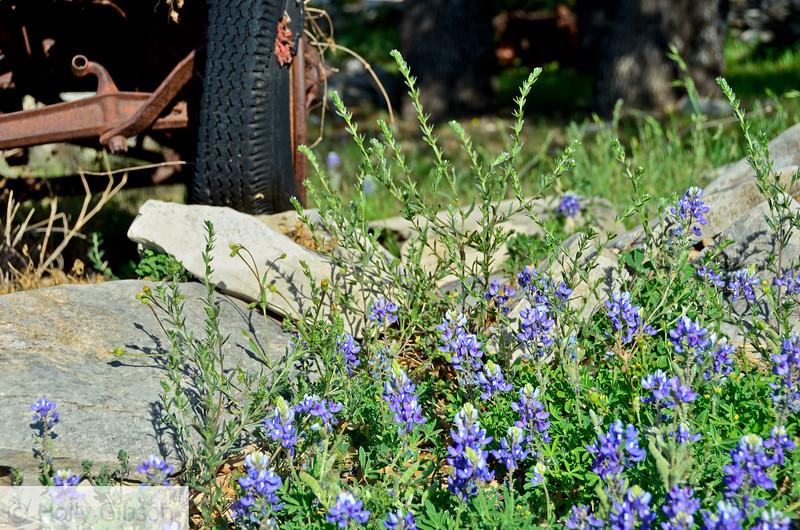 Old car in Llano, Texas