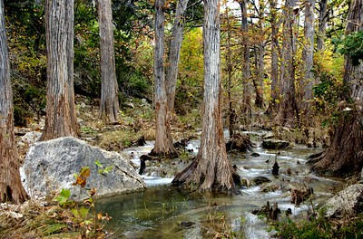 Hamilton Creek, Dripping Springs, Tx