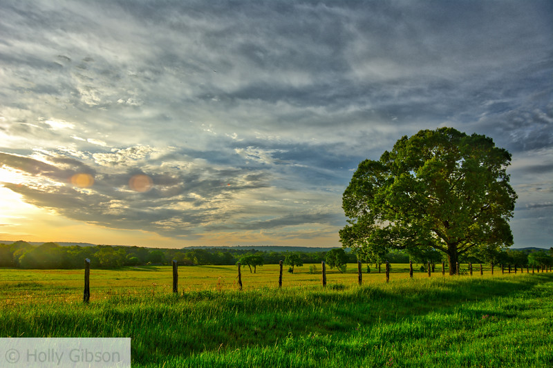 Sunrise in the hill country