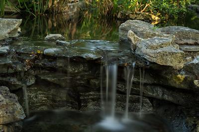 Zilker Gardens