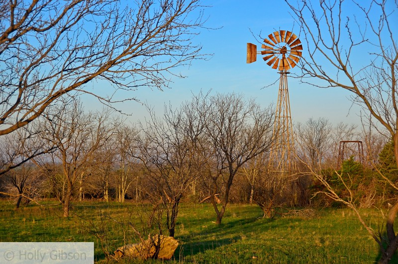 Windmill near Cleburne, Texas