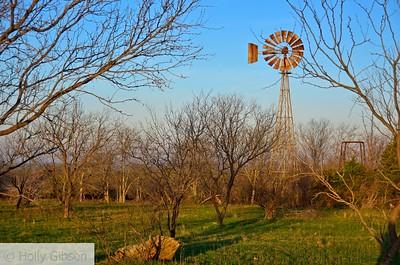 Windmill near Cleburne, Texas