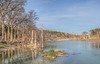 Blanco River, with flood damaged trees, River Road, Wimberley, Texas