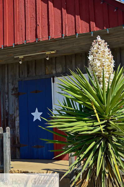 Closed gas station - near Art, Texas