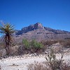 Guadalupe Peak from old trail