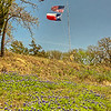 American and Texas flags and bluebonnets