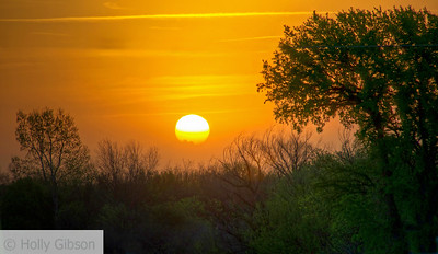 Sunrise - Near Henrietta, Texas