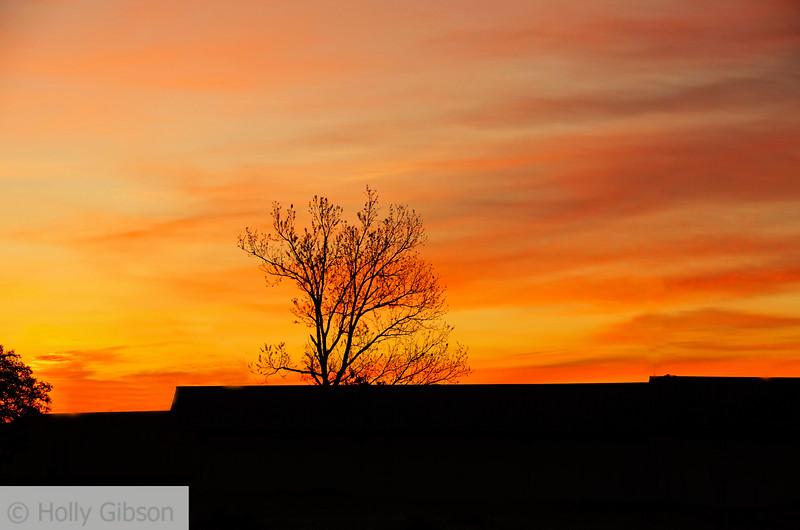 Sunrise - Paris, Texas