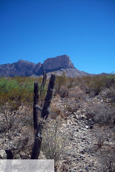 Old fence and Guadalupe Peak