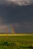 Plains Of Texas