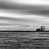 Abandoned Farm House, Landergin, TX