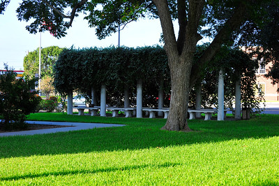Arbor on the Courthouse Grounds