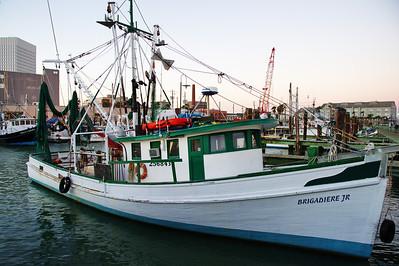 Shrimp boat fleet, Galveston, Texas