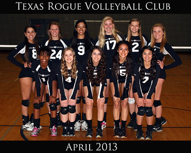 Texas Rogue